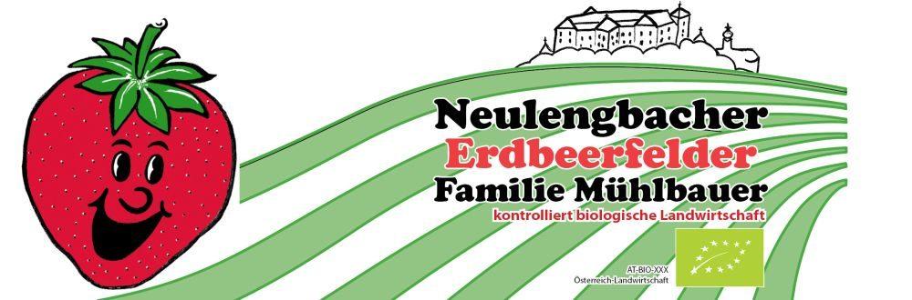 Neulengbacher Erdbeerfelder